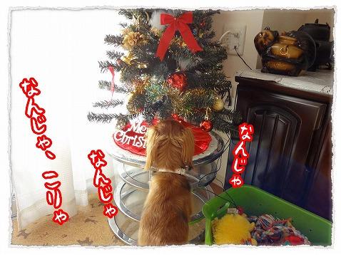 2012_12_10_1.jpg