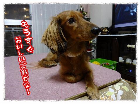 2012_12_11_2.jpg