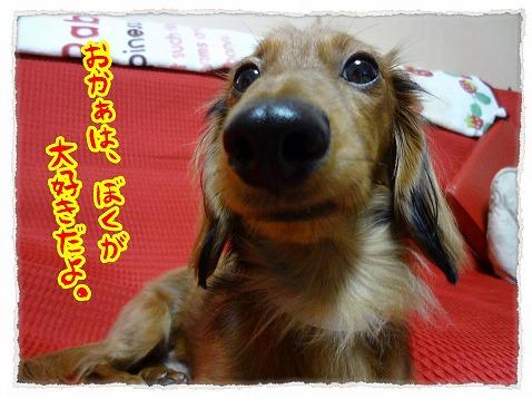 2012_12_12_3.jpg