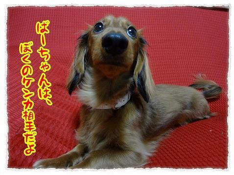 2012_12_12_5.jpg