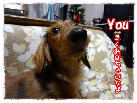 2012_12_13_3.jpg