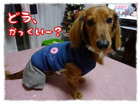 2012_12_15_5.jpg