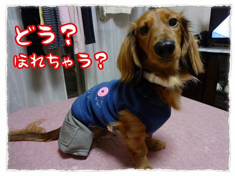 2012_12_15_6.jpg