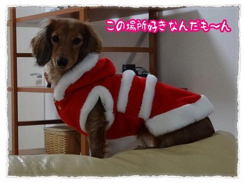 2012_12_17_1.jpg