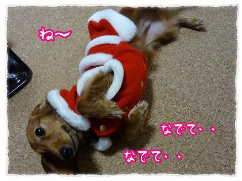 2012_12_17_2.jpg