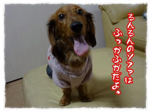 2012_12_17_3.jpg
