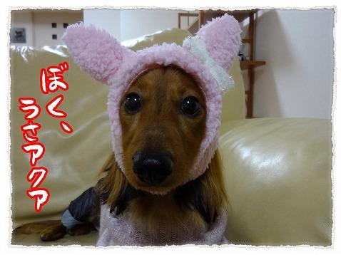 2012_12_17_8.jpg
