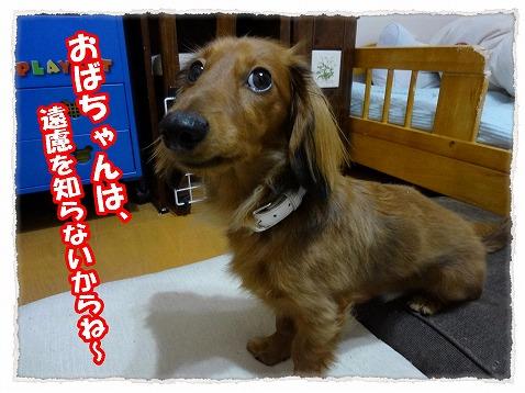 2012_12_18_1.jpg