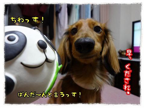 2012_12_19_1.jpg