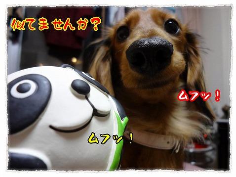 2012_12_19_3.jpg