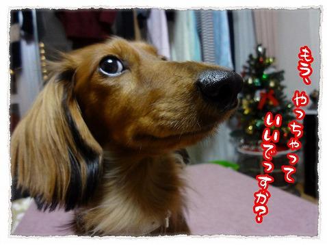 2012_12_19_4.jpg