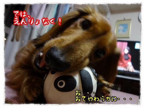 2012_12_19_5.jpg
