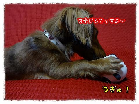 2012_12_19_6.jpg
