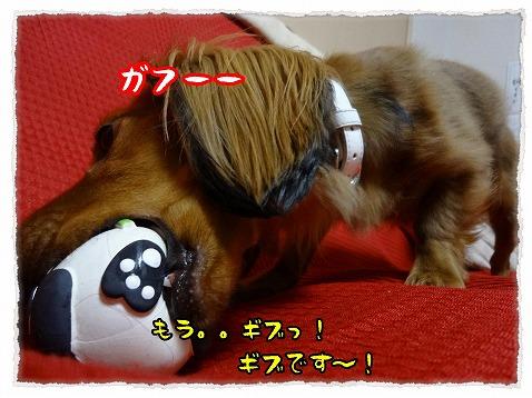 2012_12_19_7.jpg