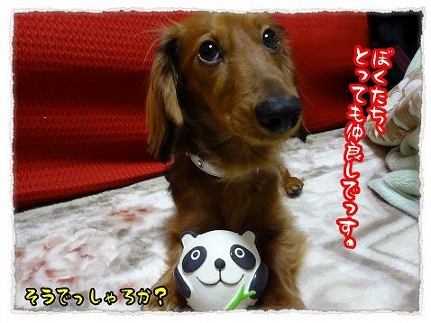 2012_12_19_8.jpg