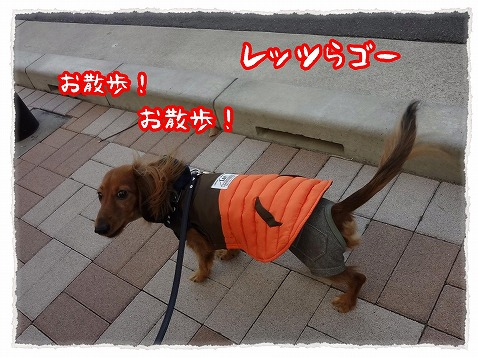 2012_12_20_1.jpg