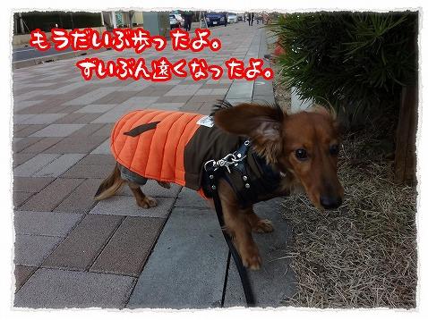 2012_12_20_2.jpg