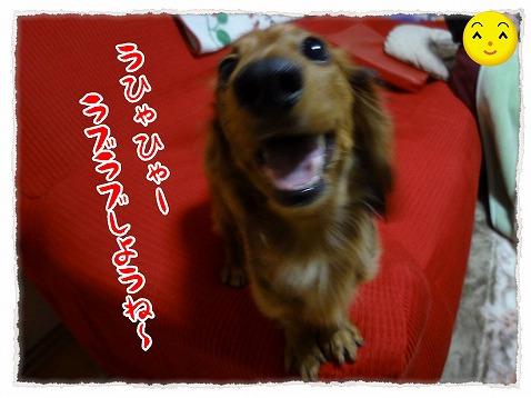 2012_12_24_2.jpg