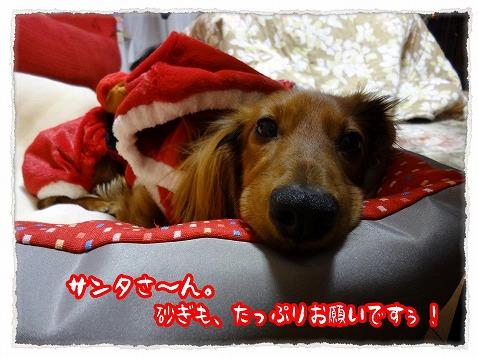 2012_12_25_5.jpg