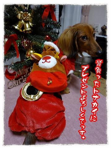 2012_12_25_6.jpg