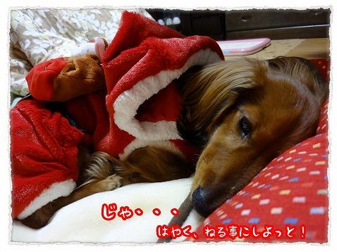 2012_12_25_8.jpg