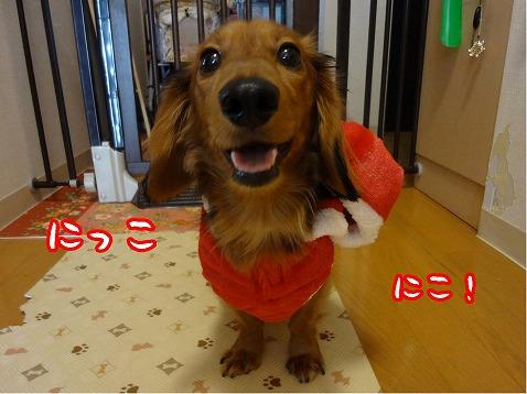 2012_12_26_1.jpg