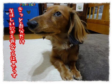 2012_12_28_2.jpg