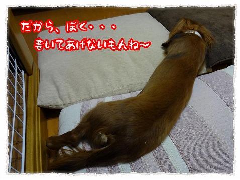 2012_12_28_3.jpg