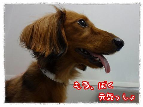 2012_12_29_2.jpg