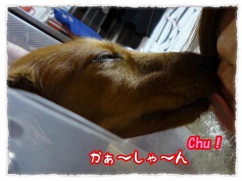 2012_12_4_2.jpg