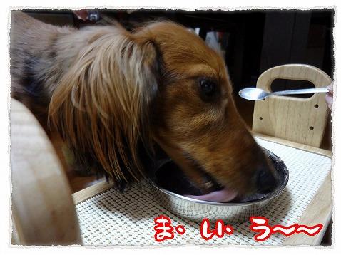 2012_12_5_4.jpg