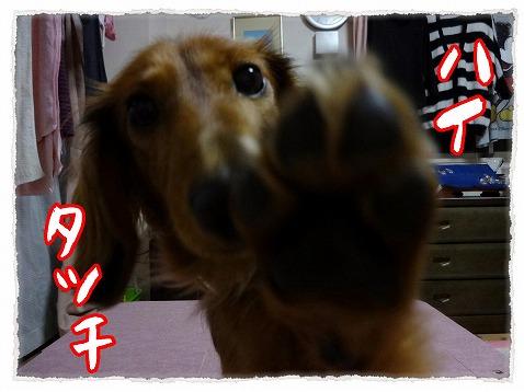 2012_23_5.jpg