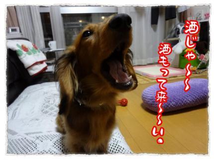 2012_4_26_4_convert_20120426231028.jpg