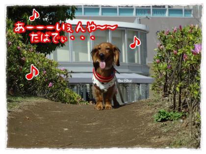 2012_4_28_10_convert_20120428232810.jpg