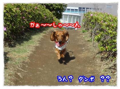 2012_4_28_7_convert_20120428232722.jpg