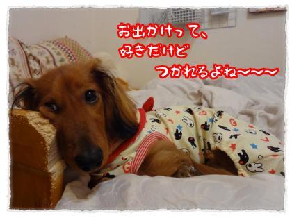 2012_4_28_8_convert_20120428232738.jpg