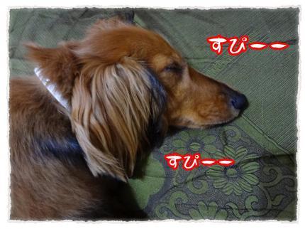 2012_4_30_5_convert_20120430232137.jpg