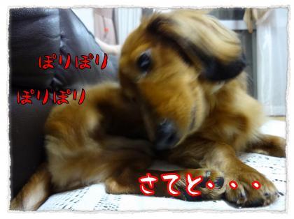 2012_5_10_2_convert_20120510213928.jpg