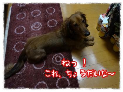 2012_5_10_6_convert_20120510214051.jpg