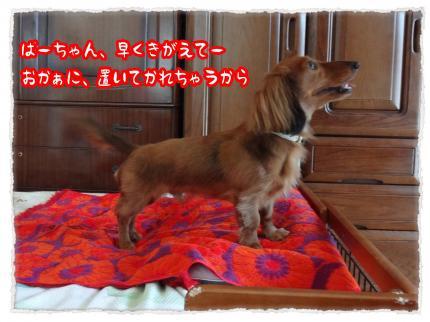 2012_5_16_1_convert_20120516223717.jpg