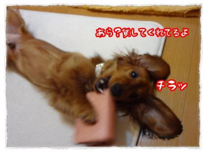 2012_5_17_5_convert_20120517233502.jpg