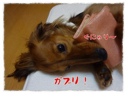2012_5_17_9_convert_20120517233606.jpg