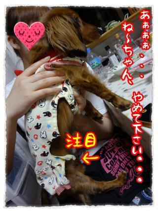 2012_5_18_4_convert_20120518230722.jpg