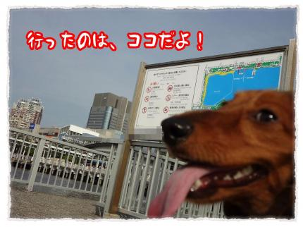 2012_5_19_1_convert_20120519231454.jpg