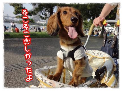 2012_5_19_3_convert_20120519231602.jpg