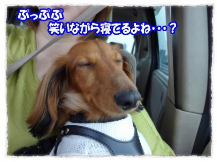 2012_5_19_4_convert_20120519231645.jpg
