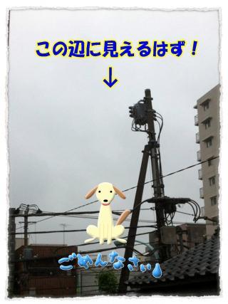 2012_5_22_3_convert_20120522225021.jpg