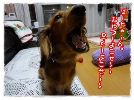 2012_5_24_3_convert_20120524225500.jpg