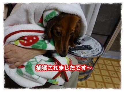2012_5_26_1_convert_20120524225325.jpg