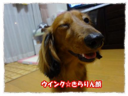 2012_5_28_4_convert_20120528231344.jpg